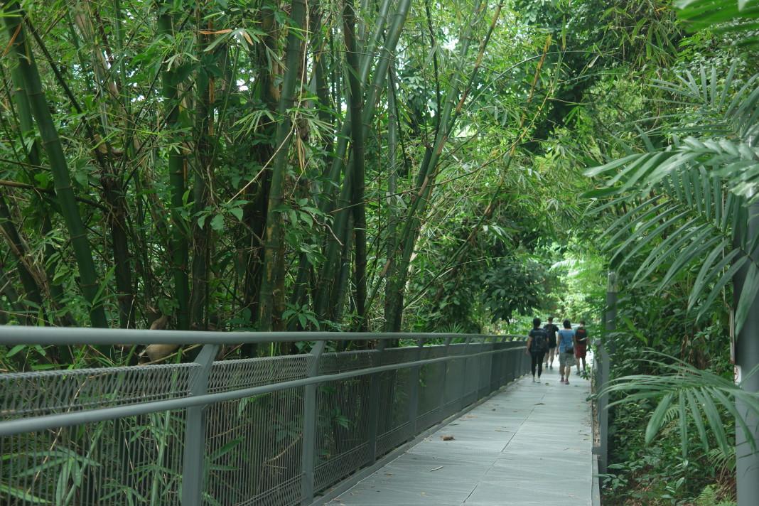 Nature S Way Singapore