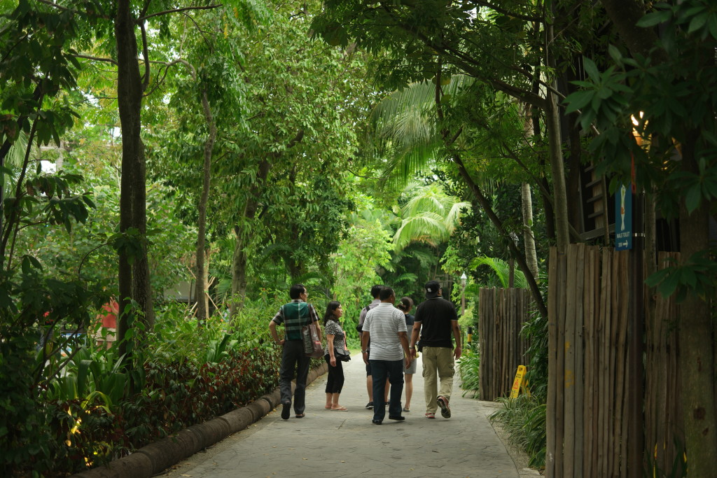 Walking towards Palawan Beach