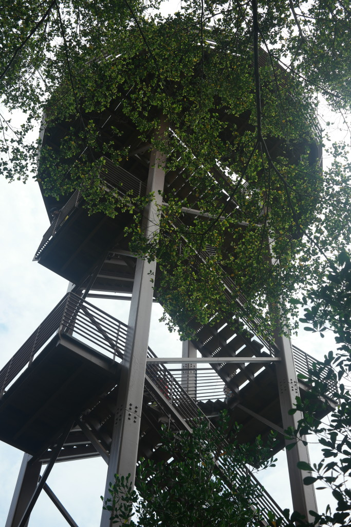 The Viewing Tower
