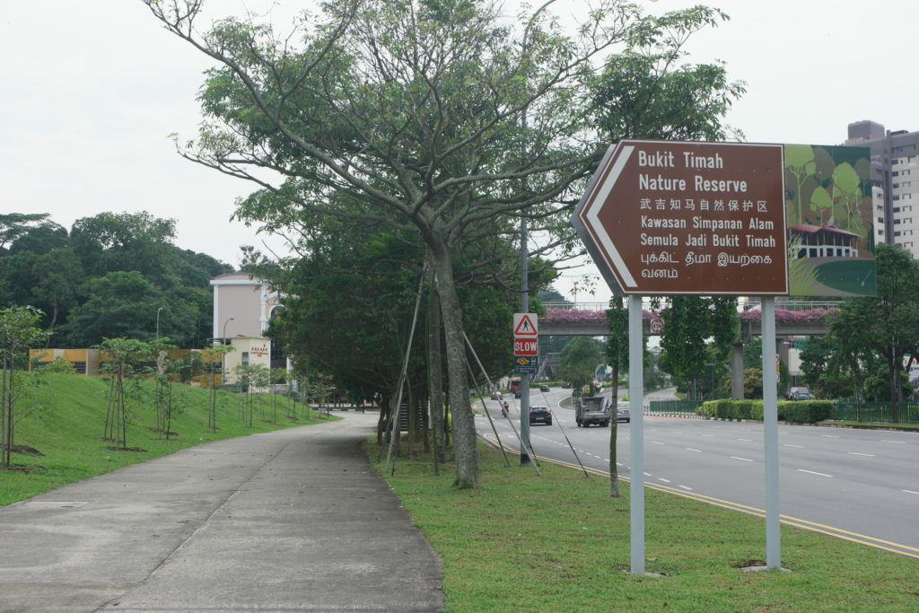View along Upper Bukit Timah Road (after Southaven II Bus Stop)