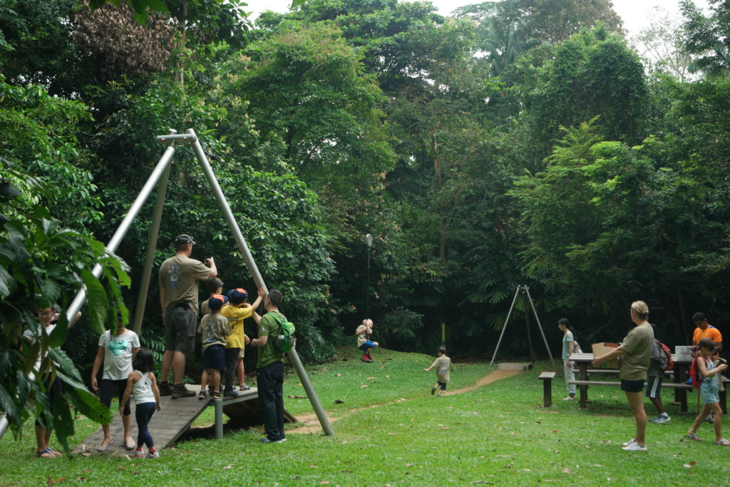 Mini flying fox for children