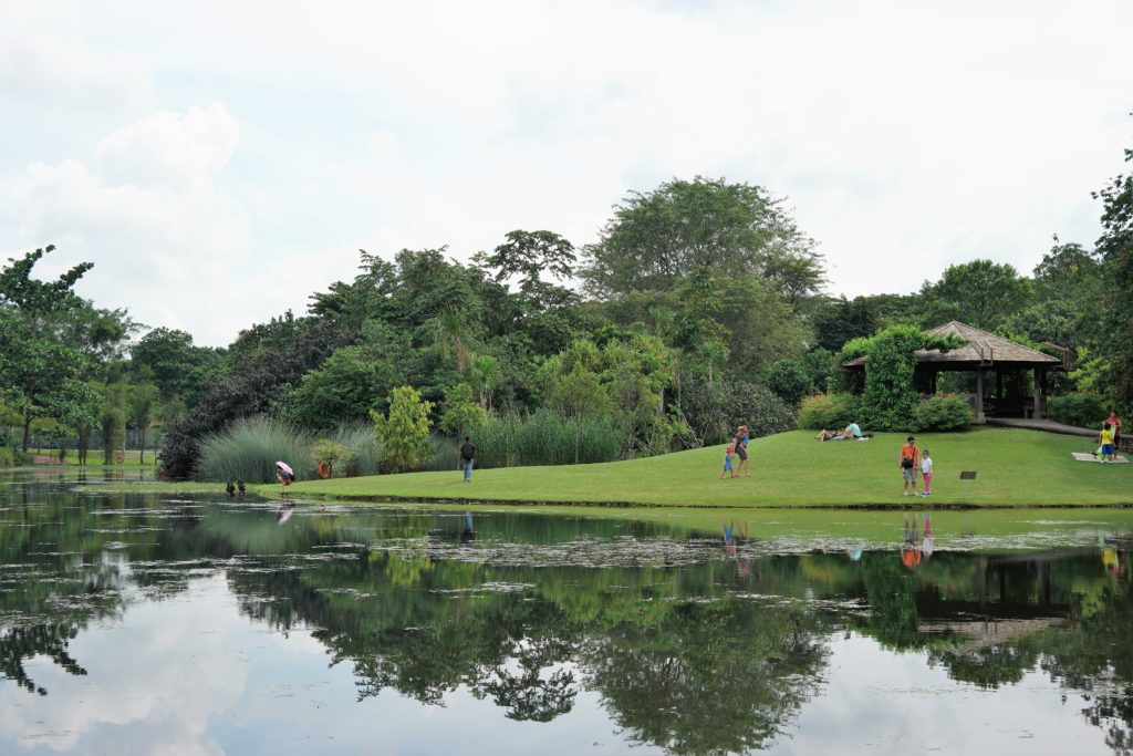 The Eco Lake