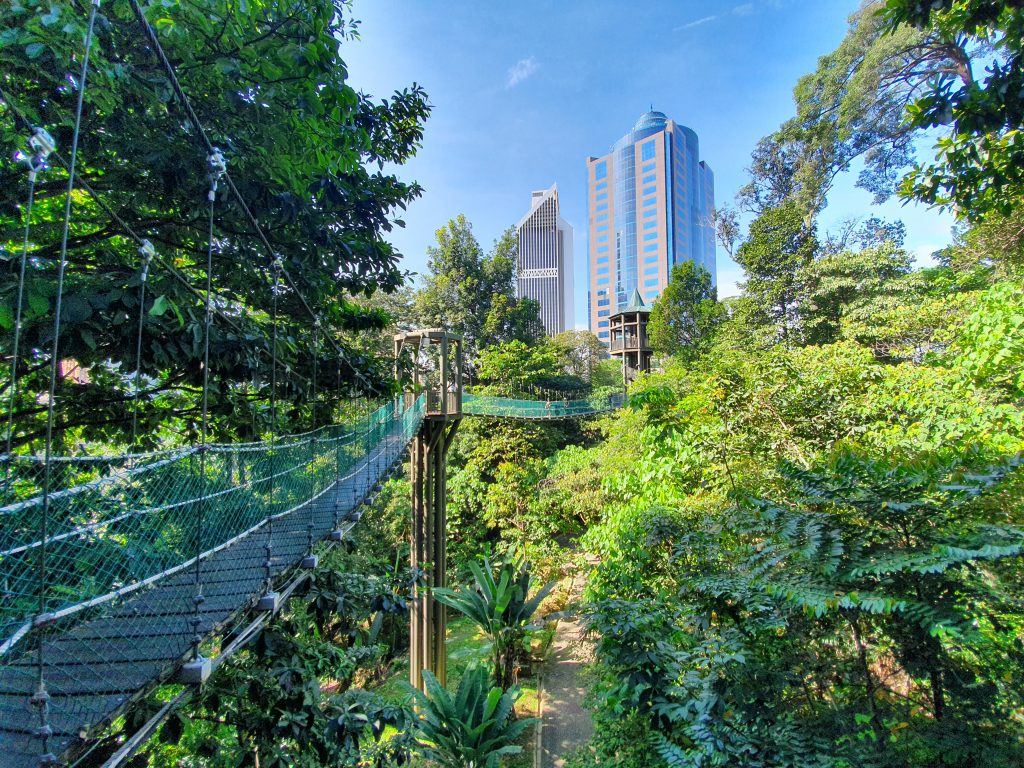 KL Forest Eco Park (Canopy Walk Trail) - 1step1footprint
